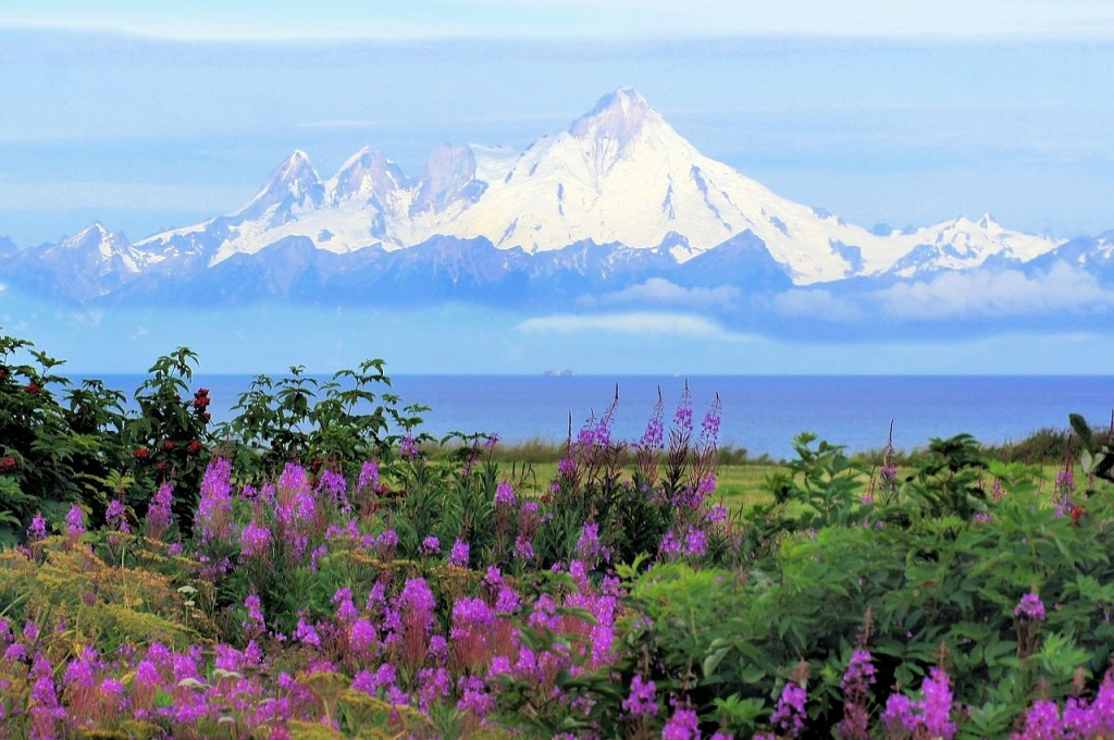 Celebrate The 4th Of July In Alaska