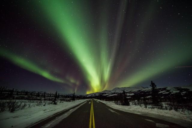 Alaskan road trip